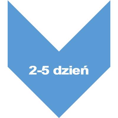 dzien 2-5