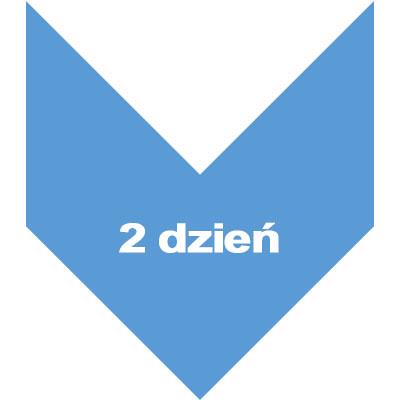 dzien 2